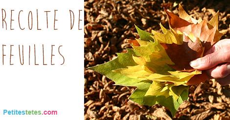 bricolage avec des feuilles d 39 automne. Black Bedroom Furniture Sets. Home Design Ideas